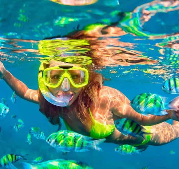 Snorkel Maroma