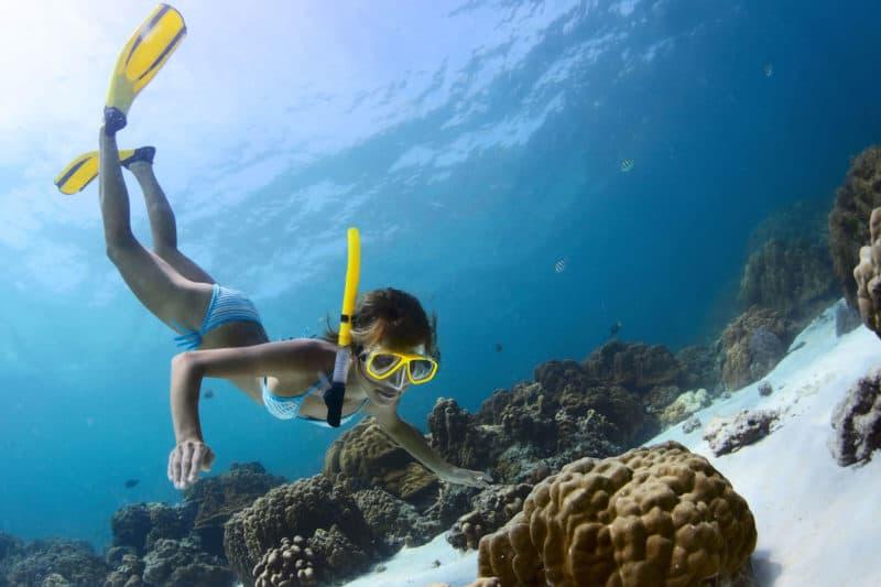 Snorkel Tour Riviera Maya